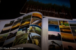 Cane Harvesting 2012
