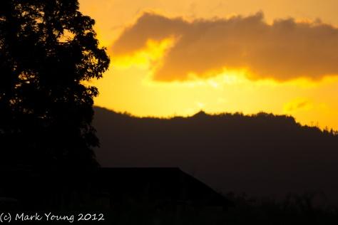 Homebush Sunset